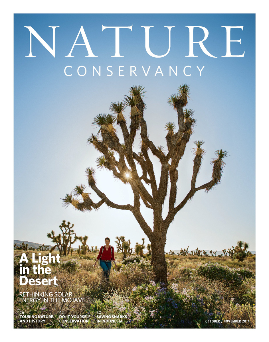 Mojave Desert for Nature Conservancy